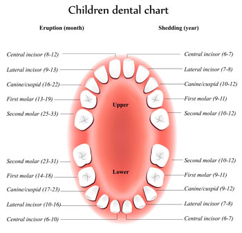 Children Dental Care